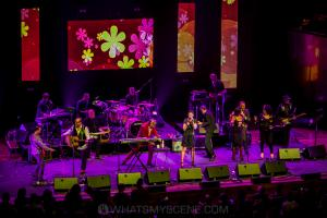 The APIA Good Times Tour