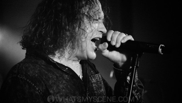 Flashback Snap Scene: The Screaming Jets - York on Lilydale 12th Jan 2019
