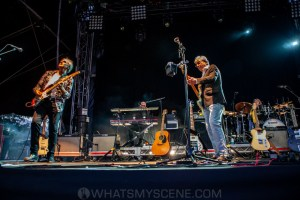 10CC at Melbourne Zoo Twilights, 21st February 2020 by Mandy Hall (22 of 36)