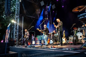 10CC at Melbourne Zoo Twilights, 21st February 2020 by Mandy Hall (7 of 36)