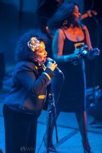 The Black Sorrows with Vika & Linda Bull