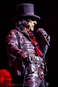 Alice Cooper, Quodos Bank Arena, Sydney 15th February 2020 by Mandy Hall (33 of 55)