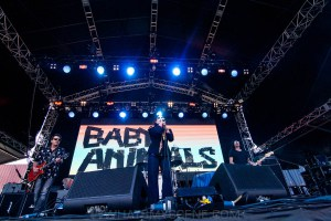 Baby Animals at By the C, Catani Gardens, Melbourne 14th March 2021 by Paul Miles (2 of 46)
