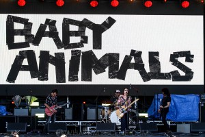 Baby Animals at By the C, Catani Gardens, Melbourne 14th March 2021 by Paul Miles (44 of 46)
