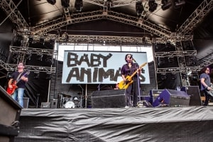 Baby Animals - Red Hot Summer Tour, Mornington Racecourse, 18th January 2020 by Mandy Hall (21 of 25)
