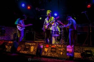 Birdstriking, The Tote, Collingwood - 20th October 2019 by Mandy Hall (11 of 34)