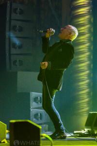 Celebrating R.E.M