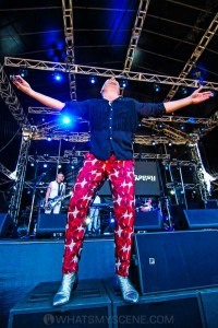 Chocolate Starfish - Mornington Racecourse, Melbourne 19th Jan 2019 by Paul Miles (28 of 29)