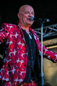 Chocolate Starfish - Mornington Racecourse, Melbourne 19th Jan 2019 by Paul Miles (4 of 29)