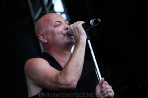 Chocolate Starfish - Bendigo Racecourse, Melbourne 23rd Feb 2019 by Paul Miles (27 of 34)
