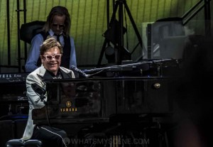 Elton John, A Day At The Green, Rochford Wines, 31 January 2020 by Mary Boukouvalas (30 of 47)