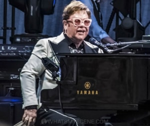 Elton John, A Day At The Green, Rochford Wines, 31 January 2020 by Mary Boukouvalas (40 of 47)