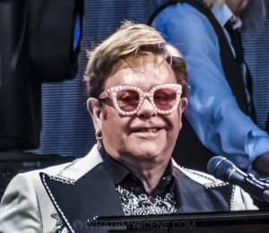 Elton John, A Day At The Green, Rochford Wines, 31 January 2020 by Mary Boukouvalas (41 of 47)