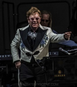 Elton John, A Day At The Green, Rochford Wines, 31 January 2020 by Mary Boukouvalas (46 of 47)