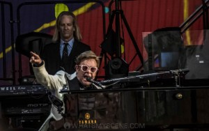 Elton John, A Day At The Green, Rochford Wines, 31 January 2020 by Mary Boukouvalas (9 of 47)