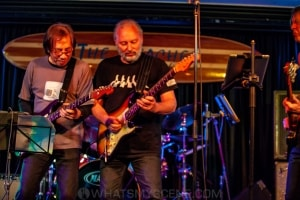 The Guitars that Ate Beaches XVII, Thirroul 8th Nov 2020 by Mandy Hall (24 of 48)