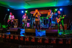 The Guitars that Ate Beaches XVII, Thirroul 8th Nov 2020 by Mandy Hall (35 of 48)