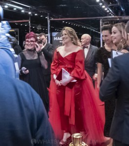 Helpmann Awards 2019, Arts Centre Melbourne, Monday 15th July by Mary Boukouvalas (13 of 32)