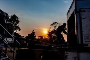 James Reyne - Red Hot Summer Tour, Mornington Racecourse, 18th January 2020 (24 of 24)