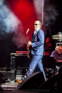 Joe Bonamassa, State Theatre Sydney 20th September 2019 by Mandy Hall  (15 of 44)