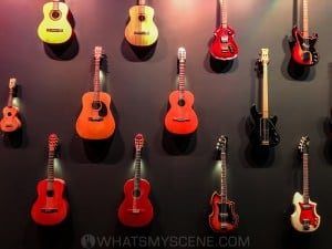 Maton Guitar Exhibition, Powerhouse Museum, Ultimo NSW 3rd August 2020 by Mandy Hall (10 of 26)