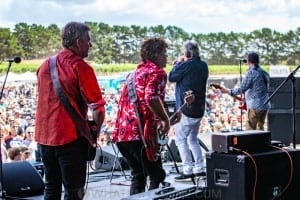 Mental As Anything - By The C - Leura Park Estate 9th Feb 2019 by Mandy Hall (15 of 24)