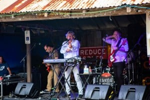 Mental As Anything at the Royal Hotel in Meredith, 3rd March 2019 by Mandy Hall (14 of 79)