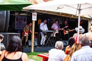 Mental As Anything at the Royal Hotel in Meredith, 3rd March 2019 by Mandy Hall (28 of 79)