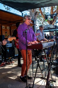 Mental As Anything, Railway Hotel, Murchison East, 17th November 2019 by Mandy Hall (22 of 38)