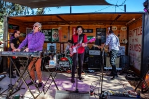 Mental As Anything, Railway Hotel, Murchison East, 17th November 2019 by Mandy Hall (25 of 38)