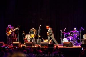 Nick Lowe & Los Straightjackets, The Forum, 18th Feb 2020 by Mandy Hall (40 of 46)