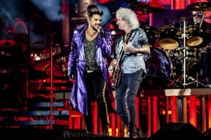 Queen & Adam Lambert, AAMI Park, 19th February 2020 by Mandy Hall (22 of 50)