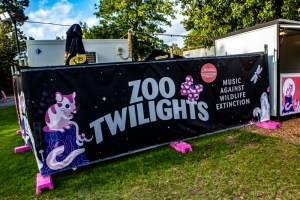 Russell Morris at Melbourne Zoo Twilights, 21st February 2020 by Mandy Hall (2 of 26)