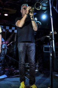 King Tide at Special Oz'D 2019 at Marrickvile Bowlo, 1st November 2019 by Mandy Hall (10 of 22)