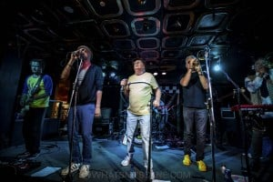 King Tide at Special Oz'D 2019 at Marrickvile Bowlo, 1st November 2019 by Mandy Hall (13 of 22)