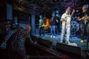 King Tide at Special Oz'D 2019 at Marrickvile Bowlo, 1st November 2019 by Mandy Hall (17 of 22)
