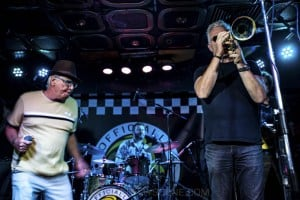 King Tide at Special Oz'D 2019 at Marrickvile Bowlo, 1st November 2019 by Mandy Hall (18 of 22)