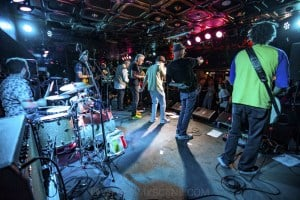 King Tide at Special Oz'D 2019 at Marrickvile Bowlo, 1st November 2019 by Mandy Hall (22 of 22)