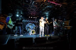 King Tide at Special Oz'D 2019 at Marrickvile Bowlo, 1st November 2019 by Mandy Hall (6 of 22)