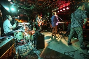 Mental As Anything at Special Oz'D 2019 at Marrickvile Bowlo, 1st November 2019 by Mandy Hall (13 of 43)