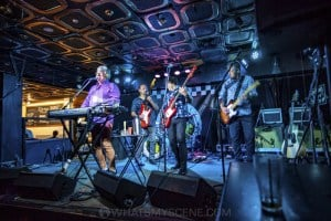 Mental As Anything at Special Oz'D 2019 at Marrickvile Bowlo, 1st November 2019 by Mandy Hall (15 of 43)
