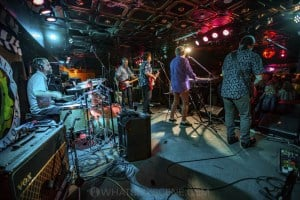 Mental As Anything at Special Oz'D 2019 at Marrickvile Bowlo, 1st November 2019 by Mandy Hall (26 of 43)