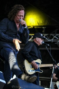 The Angels - Bendigo Racecourse, Melbourne 23rd Feb 2019 by Paul Miles (19 of 28)